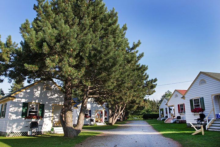 Green Gables Cottages - Policies